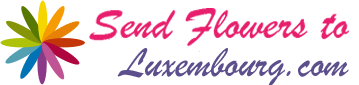 Send Flowers To Luxembourg